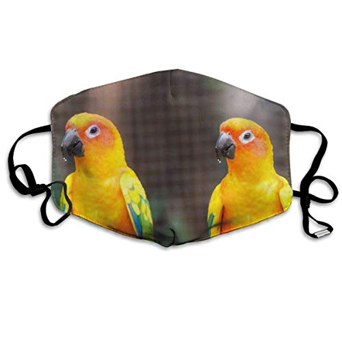 Maschera per Sport all'Aria Aperta Parakeet Print Maschera Antipolvere Comoda Maschera Anti inquinamento