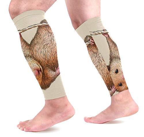 Bgejkos Engrave Hamster Sports Wadenkompressions-Ärmel Leg Compression Socks Calf Guard for Running, Cycling, Maternity, Travel, Nurses -