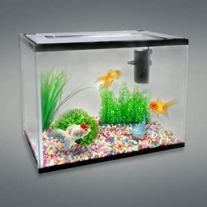 aquarium starter set lollipop 16l 36cm haustier. Black Bedroom Furniture Sets. Home Design Ideas
