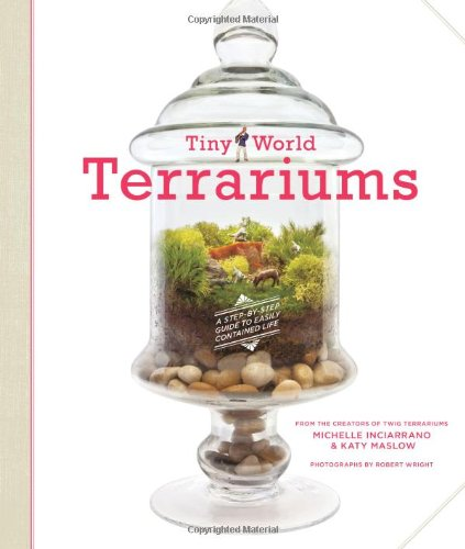 tiny-world-terrariums-a-step-by-step-guide-to-easily-contained-life