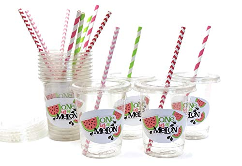 One in a Melon Becher - Wassermelone 1. Geburtstag Party Supplies and Favors