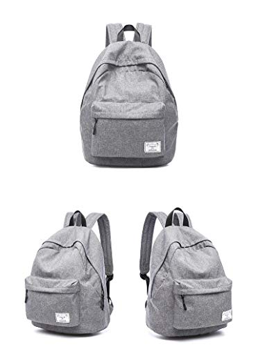 Diswa Classical Unisex Backpack for Women Nylon Child School Bag Special Use for Picnic 30 * 40 * 16 cm (Gray) Image 2
