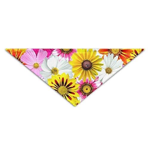Gxdchfj Flowers Colorful Summer Triangle Pet Scarf Dog Bandana Pet Collars Dog Cat - Birthday (Kostüme Girl Machen Zu Cute)