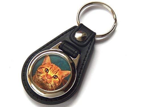 Moody Motorz Britische Kurzhaar Rot Tabby Katze Kätzchen Qualitätsleder und Chrom Schlüsselring -