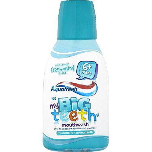 aquafresh-mon-grand-dents-rince-bouche-aux-enfants-de-menthe-fraiche-saveur-6-ans-et-plus-300-ml