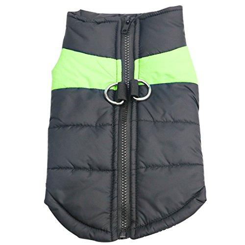 Idepet Haustier Hund Warm Mantel Jacke Wasserdichte Kleidung Kleine mittlere große Haustier Hund Katze Bekleidung Bekleidung Frühling Herbst Winter- (M, Grün)