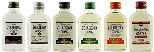 Geschenkset 6 x Żolądkowa Gorzka Minis in der Probiergröße | Polnischer Wodka | je 0,1 Liter