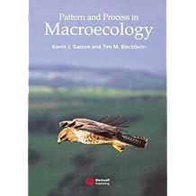 Pattern & Process in Macroecology