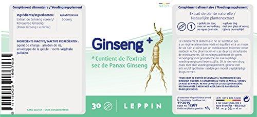411a1JMfZ9L - Leppin–Ginseng più 30Capsule Vegetali–Estratti concentrati di Ginseng Coreano–Integratori alimentari naturali
