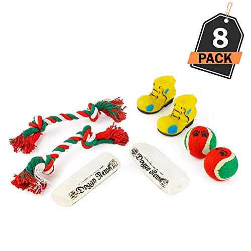 Kompanion Dog Toy Set Christmas Stocking Gift, Set of 2, Ideal Gift for Dog Owners, Dogs