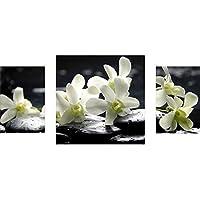 Gsmarkt | Dreiteiliges Wandbild   3 Teilig ? Acrylglasbilder Acryl Glasbild  80x40 Cm Orchidee Schwarz Weiß