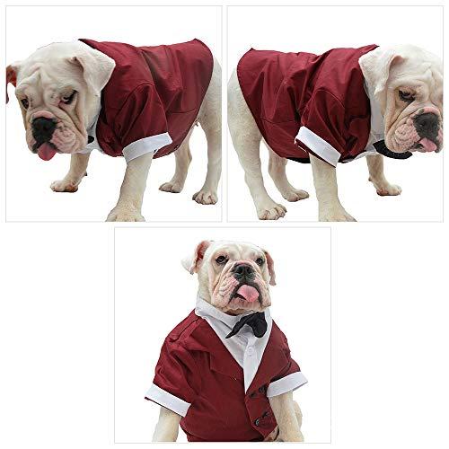 Kostüm Tuxedo Shirt Red - DANMEI Haustier Katze Hundebekleidung, Haustier Welpen Mode Anzug Krawatte Kostüm, Hochzeit Shirt formelle Smoking mit Krawatte Anzug