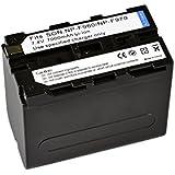 Bresser Batterie de rechange Lithium-Ion pour Sony NP-F960/F970