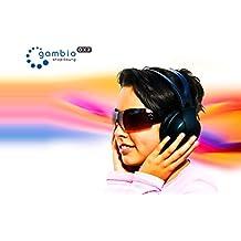 Gambio GX3 Webshop - XXL-Service + SEO + Domain + Webhosting