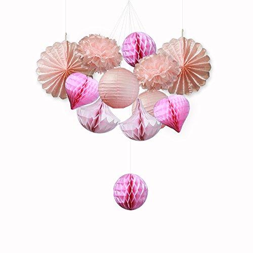 SUNBEAUTY Serie de rosa Pom Pom flor de papel & Abanico& Bola alveolar& Farol decoración colgando para boda cumpleaños Santa semana fiesta Baby