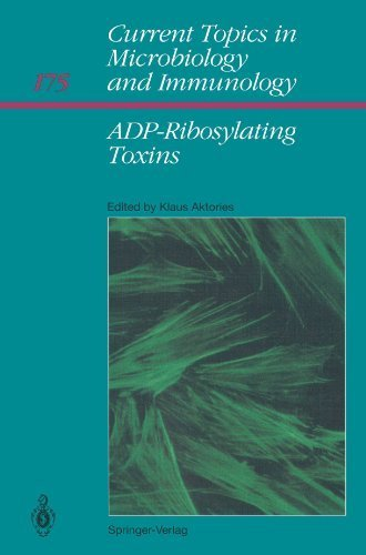 ADP-Ribosylating Toxins (Current Topics in Microbiology and Immunology) (1992-01-01) par unknown