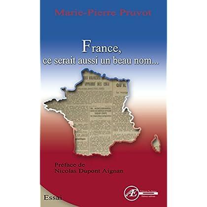 France, ce serait aussi un beau nom: Essai sur la langue française (Les Savoirs)