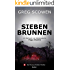Siebenbrunnen (Thomas Holder Thriller 1)