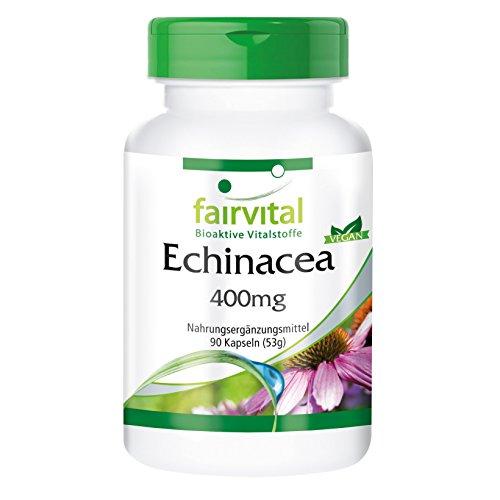 Echinacea Kapseln 400mg - HOCHDOSIERT - VEGAN - 90 Kapseln - Echinacea purpurea -