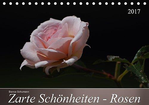 zarte-schonheiten-rosen-tischkalender-2017-din-a5-quer-edle-koniginnen-der-blumen-in-ganzer-blutenpr