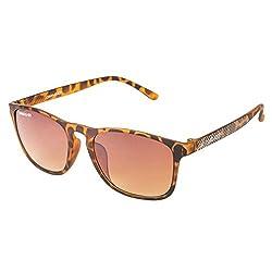 Danny Daze UV Protected Wayfarer Unisex Sunglasses (D-1708-C4|54MM|Brown Gradient)
