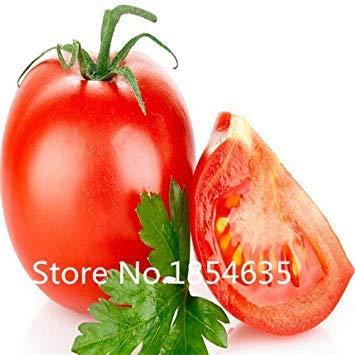 Homely 100 Graines De Légumes 9 Couleurs Différentes Graines De Légumes De Haute Qualité Diy Garen Vivace Floraison Graines Fleurs