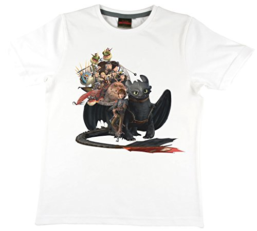 dreamworks-dragons-t-shirt-pour-enfant-motif-dragons-toothless-dragons-family-blanc-116-122