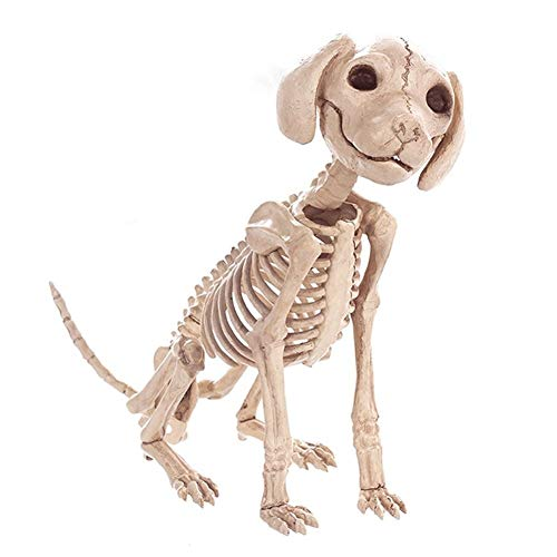Yangshan Halloween Dekoration Requisiten Tiere Skelett Maus Hund Katze Schädel Knochen Ornamente Hallowmas Horror Haunted House Party Dekoration (Color : Dog) -