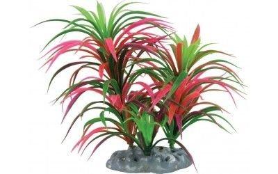 Zolux–Feuerwerk Kunstpflanze, großes Modell für Aquarium Nanolife/. (Große Aquarien Und Aquarien)