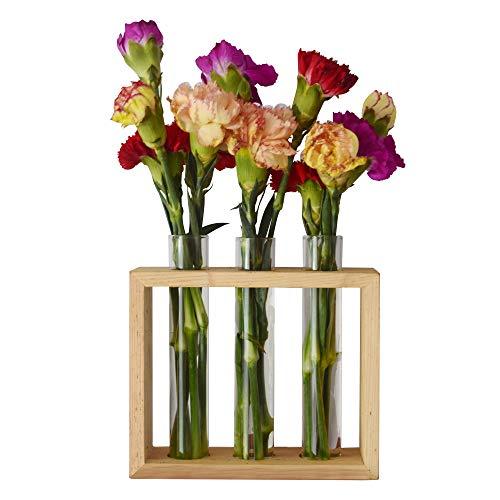 Feiren Intérieur/extérieur Décoration murale à suspendre Plante Tube à essai Fleur Bud Vase support en bois - Maison Plante communauté/Plantagram/maison Plante Club/été Plante Gang