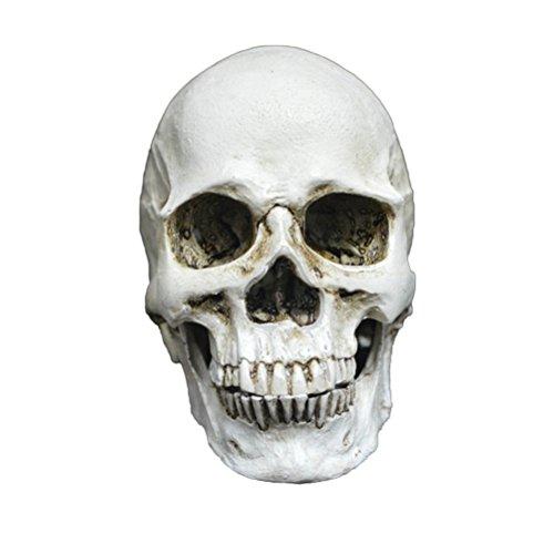 OULII Decoración del Cráneo para Halloween Calavera Pequeña...