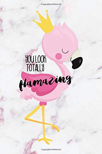 You Look Totally Flamazing: Blank Lined Notebook Journal Diary Composition Notepad 120 Pages 6x9 Paperback ( Flamingo )  Variable 1