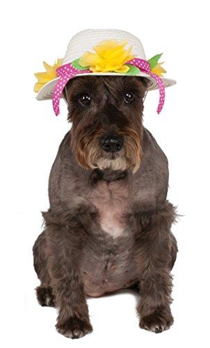 Rubies Costume Company Kentucky Derby/Ostern Motorhaube Pet Hat
