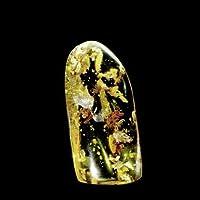 CrystalAge BEAUTIFUL Baltic Amber Specimen ~57mm with Fossil Flies preisvergleich bei billige-tabletten.eu