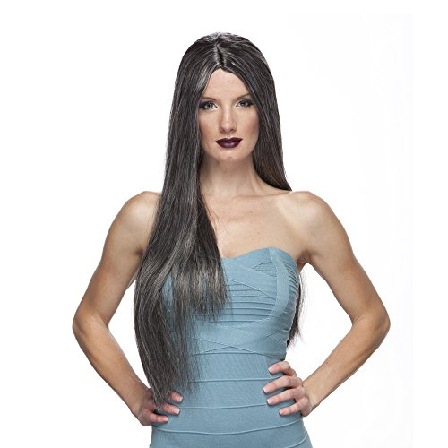 Characters 26 Inch Parted Synthetic Wig - Grey
