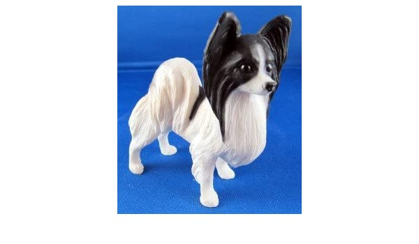 North Light Dogs Papillon in Black and White