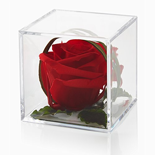 timeless-romantic-red-rose-cube-gift