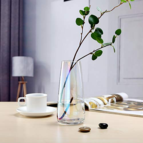 ToDIDAF Jarrón de cristal transparente para plantas, jarrón de ...