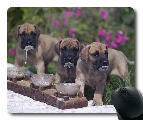 Gaming-Mousepads, Boxer-Dog-Doggehund, Präzisionsnaht, strapazierfähiges Mauspad
