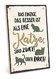 TypeStoff Holzschild mit Spruch - MEHR Katzen - im Vintage-Look mit Zitat als Geschenk und Dekoration zum Thema Haustier und Katzennarr (19,5 x 28,2 cm)