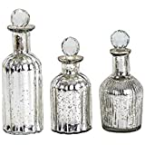 Sammsara Trinity Table Top Set Of3 Silver Glass Decorative Bottle For Table,living Room,office,Interior.Glass Christmas Decorations Bottles (9,8,7 Inches)