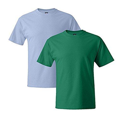 Hanes Mens 5180 Short Sleeve Beefy T, 1 Kelly Green/1 Light Blue 1 Kelly Green / 1 Light Blue