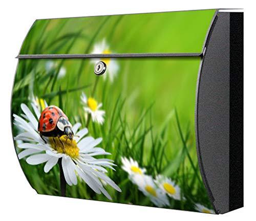 Briefkasten motivX Edelstahl bunt Zeitungsfach Design Wandbriefkasten Swing mit Motiv - Marienkäfer auf Wiese