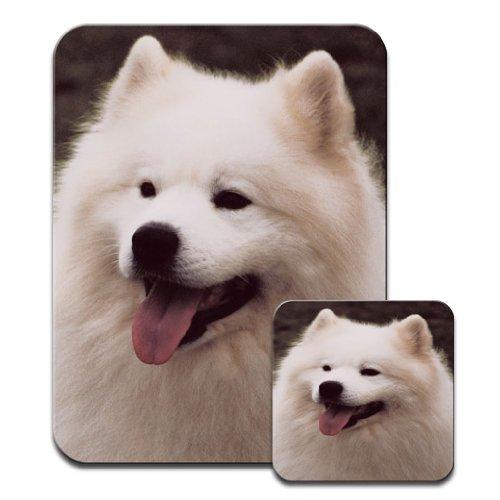 samoyede-chien-close-up-snuggle-tapis-de-souris-et-dessous-de-verre-motif