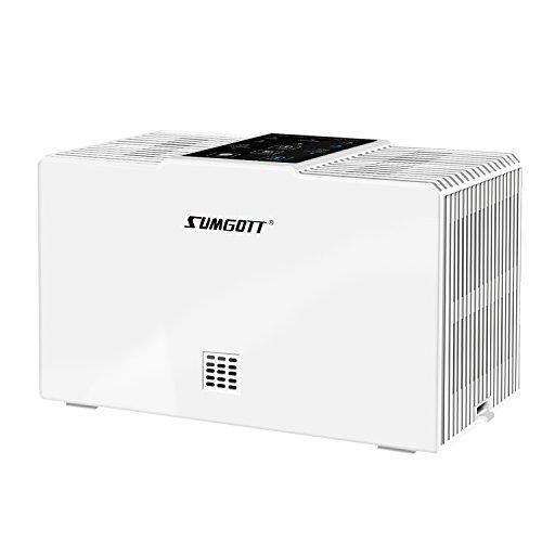 Luftreiniger SUMGOTT Air Purifier HEPA mit Kalten Katalysator Filter, Anion Sterilisation, PM Eliminator Luftfilter für Allergiesaison - Entfernt 99,99% Allergene, Staub, Pollen, Haustier Dander
