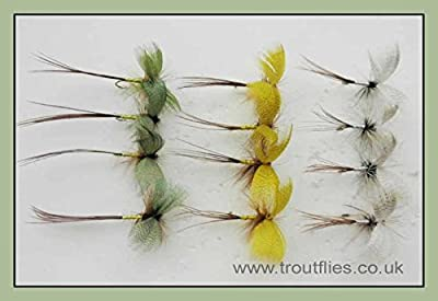 Drake Mayflies, 12 Pack Coloured Drake Mayfly Fishing Flies, Green, Grey, YellowSize 10 hook, Trout Fishing Flies from Troutflies UK