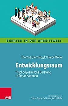 Entwicklungsraum: Psychodynamische Beratung in Organisationen