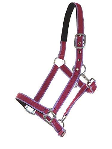 Riding Halfter unterlegt Paddock-bicolour helllila-rot Gr Full Warmblut