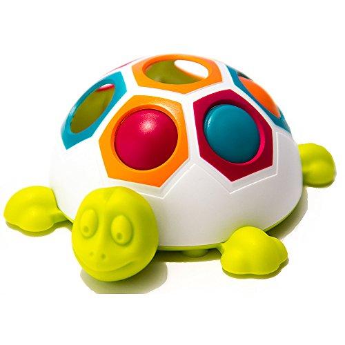 Fat Brain Toys FA123-1 Pop N Slide Shelly Spiel