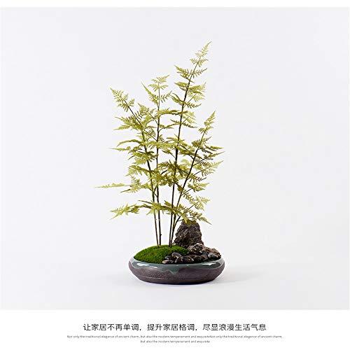 Simulazione verde pianta di bambù in vaso moderno nuovo impianto cinese bonsai modello sala sala espositiva decorazione ornamenti